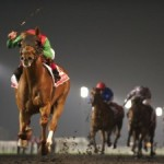 Dubai World Cup 2015 il 28 marzo, all'ippodromo Meydan