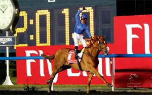 Dubai World Cup 2015 African Story