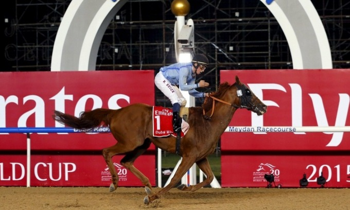 vincitore Dubai World Cup 2015 Prince Bishop