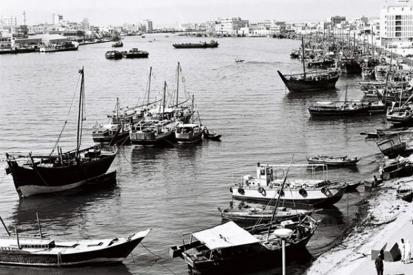 Dubai creek anima vive