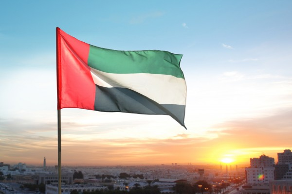 flag day emirati arabi uniti