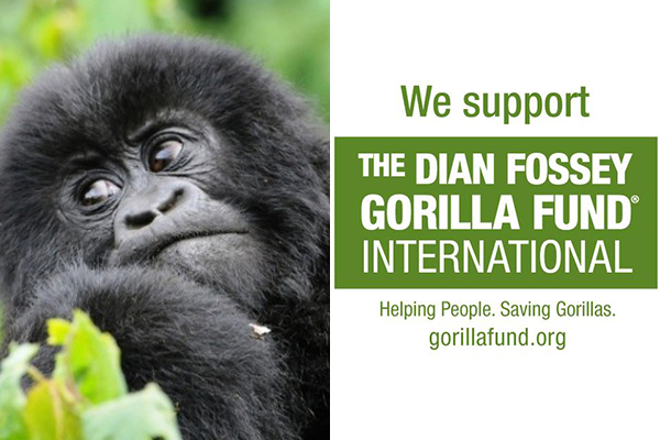 We Support Gorilla Fund